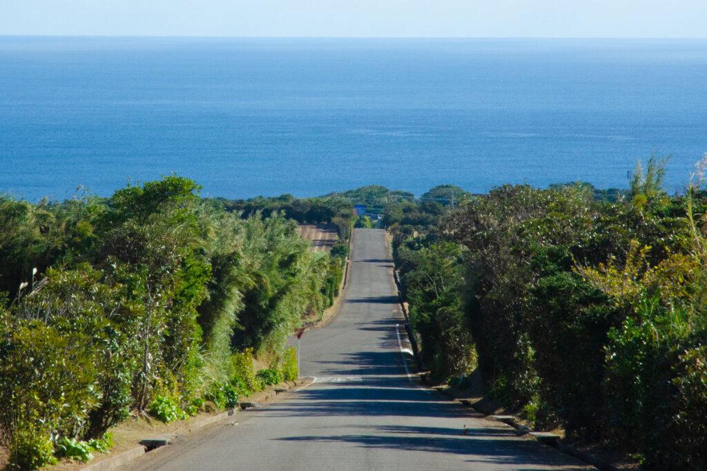 海へ向かう道