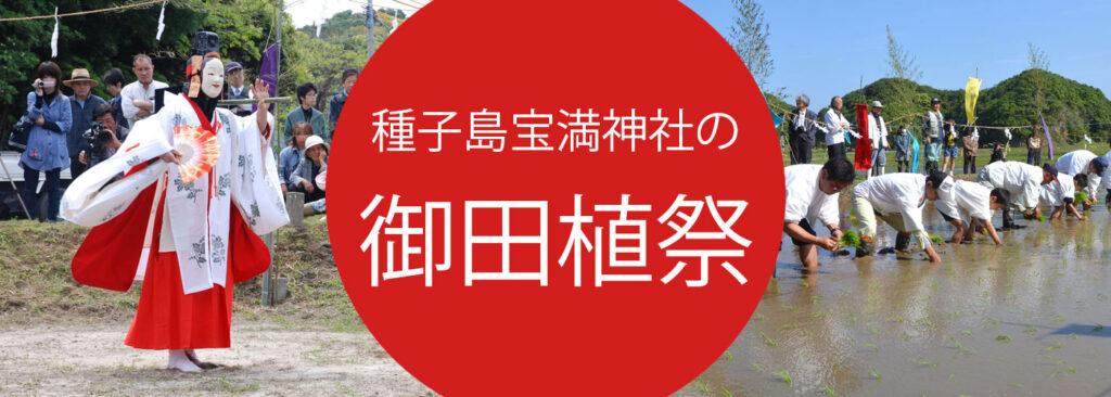 種子島井ベント御田植祭